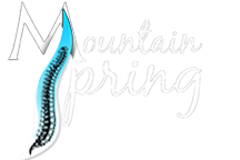 Mountain Spring Chiropractic